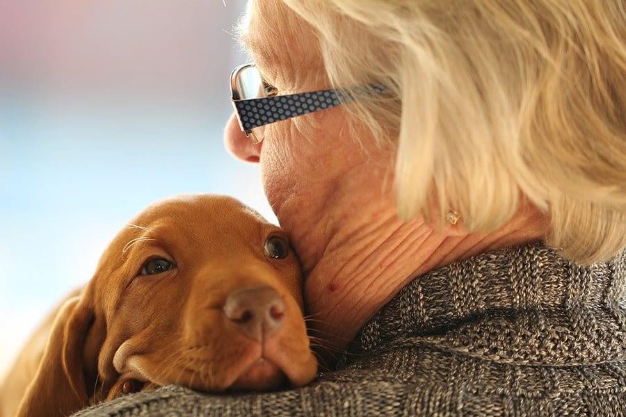 Οι σκύλοι στην υπηρεσία των ανθρώπων με άνοια